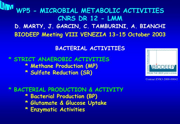 Wp5 microbial metabolic activities cnrs dr 12 lmm