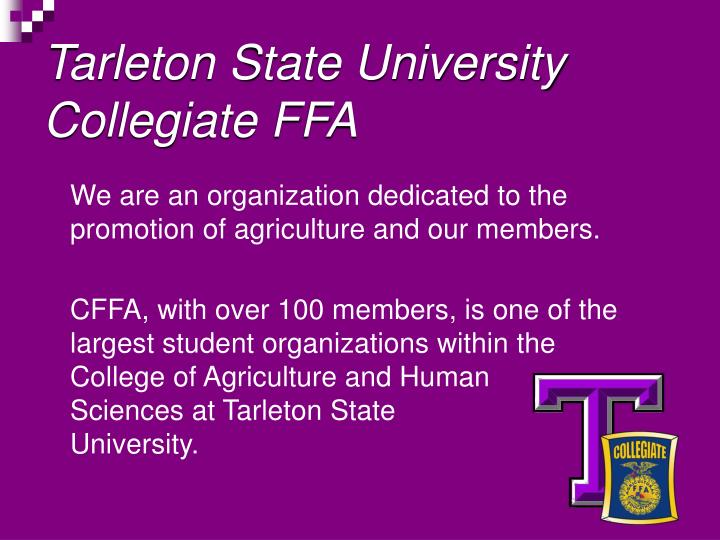 Tarleton state university collegiate ffa