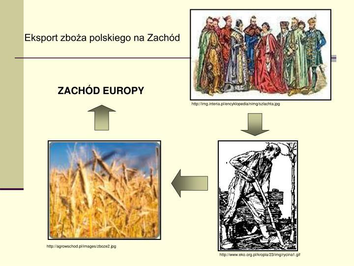 Eksport zboża polskiego na Zachód