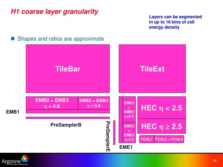 H1 coarse layer granularity