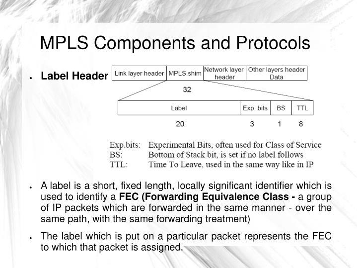 MPLS Components and Protocols