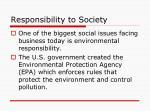 responsibility to society