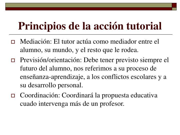 Principios de la acción tutorial