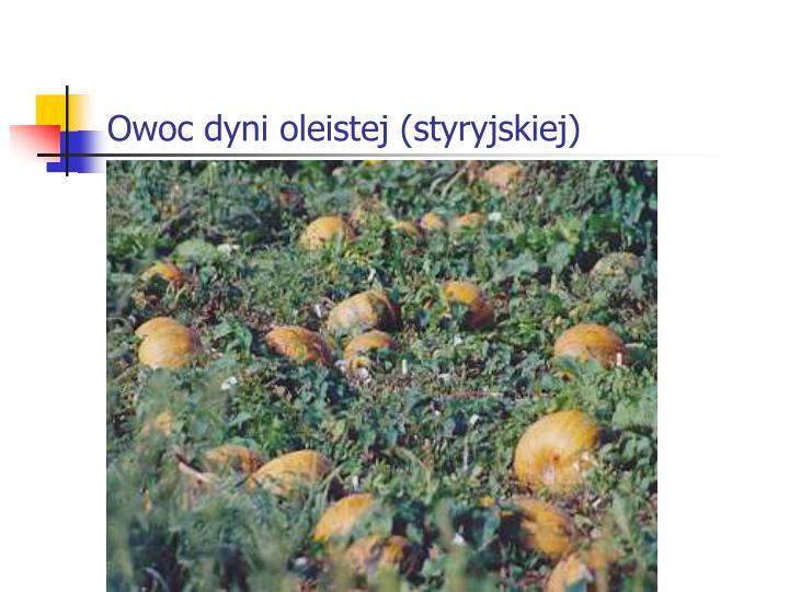 Owoc dyni oleistej (styryjskiej)