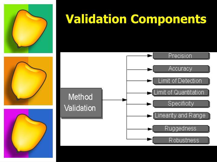 Validation Components