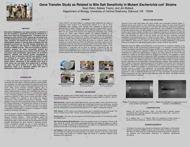 Gene Transfer Study as Related to Bile Salt Sensitivity in Mutant