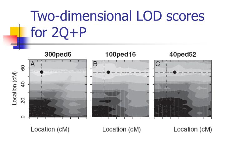 Two-dimensional LOD scores for 2Q+P