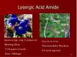 lysergic acid amide