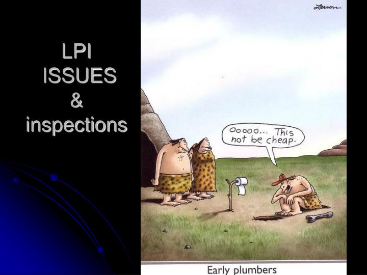 lpi issues inspections n.