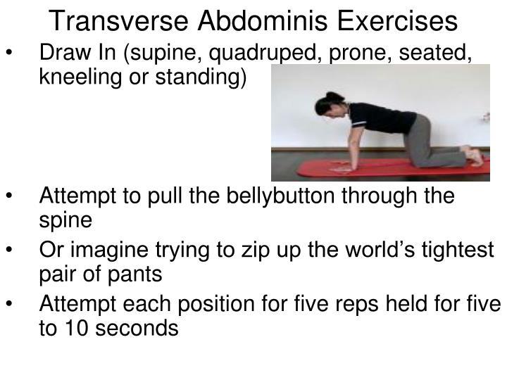 Transverse Abdominis Exercises