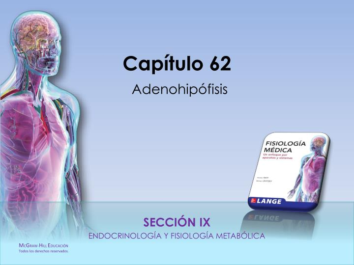 Cap tulo 62 adenohip fisis