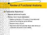 review of functional anatomy7