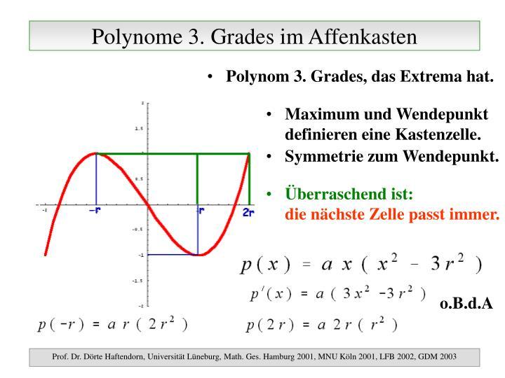 Polynome 3 grades im affenkasten
