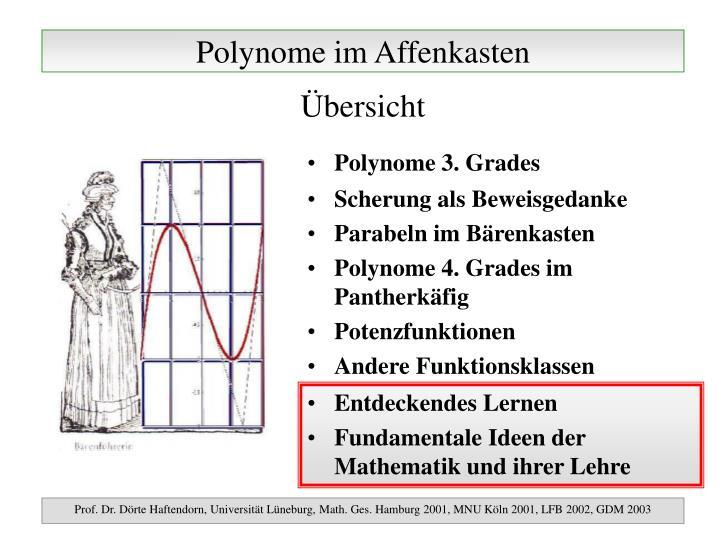 Polynome im affenkasten1