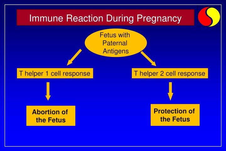 Immune Reaction During Pregnancy