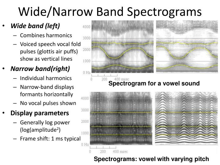 wide narrow band spectrograms n.
