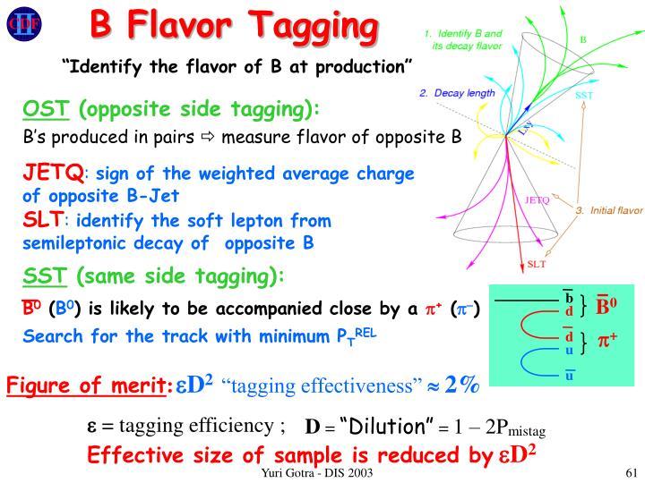 B Flavor Tagging