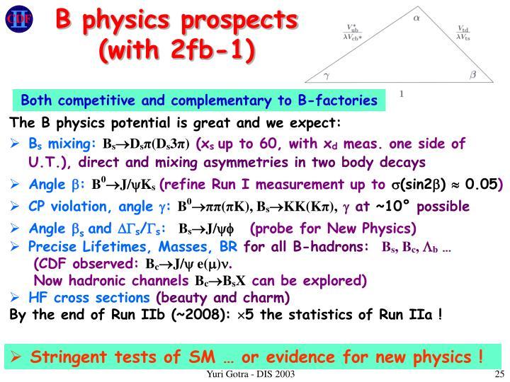 B physics prospects