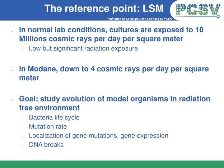 The reference point: LSM