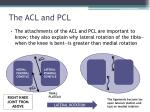the acl and pcl