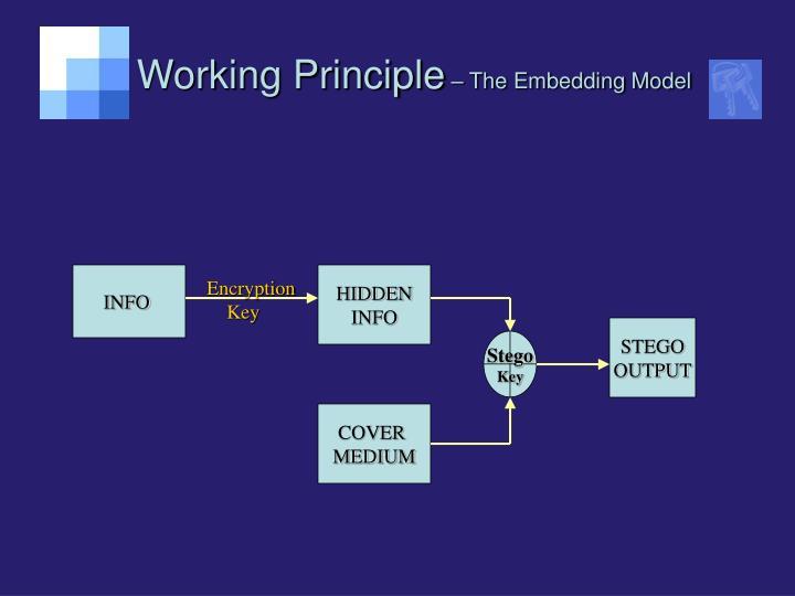 Working Principle