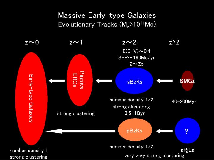Massive Early-type Galaxies