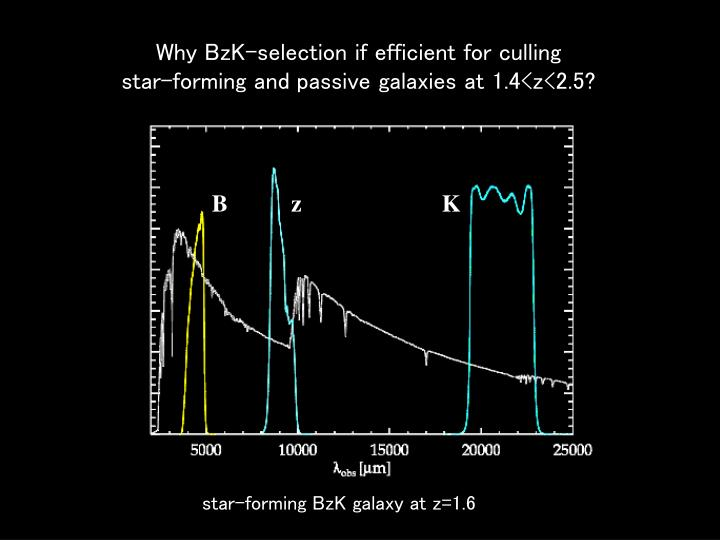 Why BzK-selection if efficient for culling