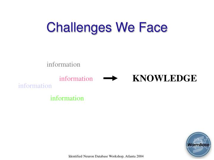 Challenges We Face