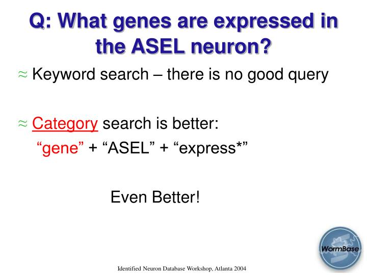 Q: What genes are expressed in the ASEL neuron?