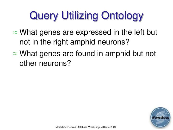 Query Utilizing Ontology
