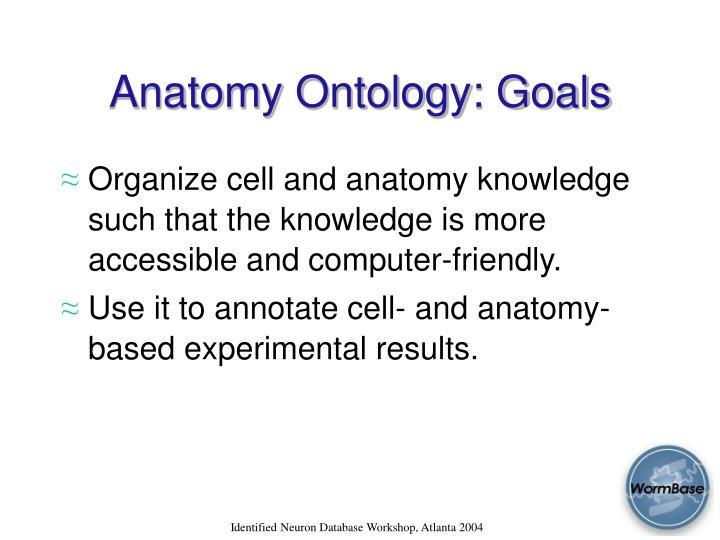 Anatomy Ontology: Goals