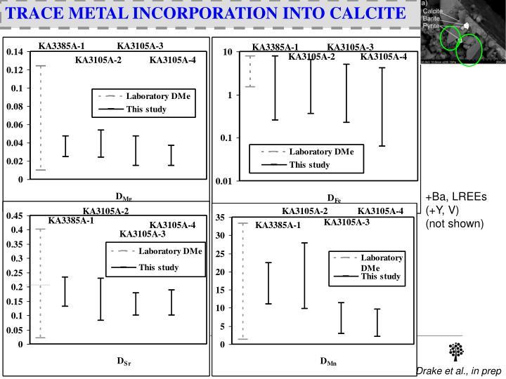 TRACE METAL INCORPORATION INTO CALCITE