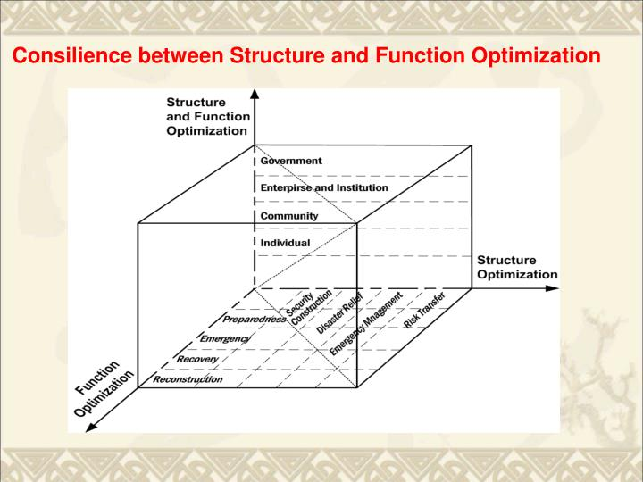 Consilience between Structure and Function Optimization