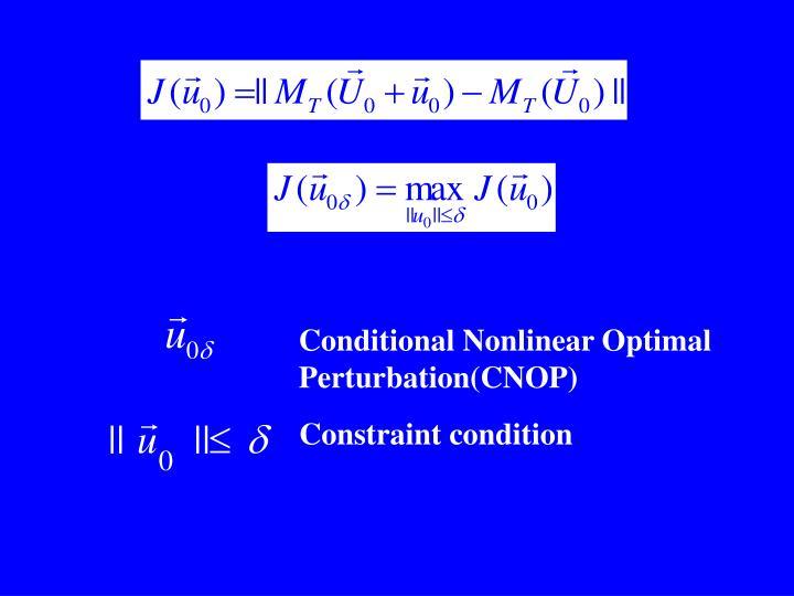 Conditional Nonlinear Optimal Perturbation(CNOP)