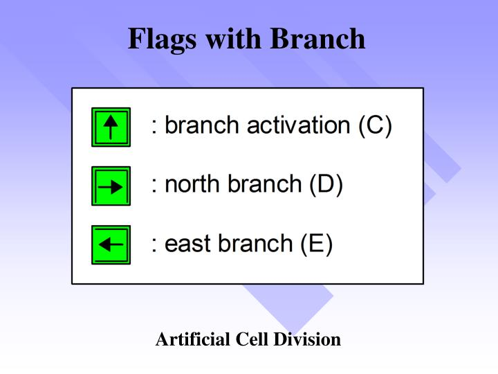 Flags with Branch