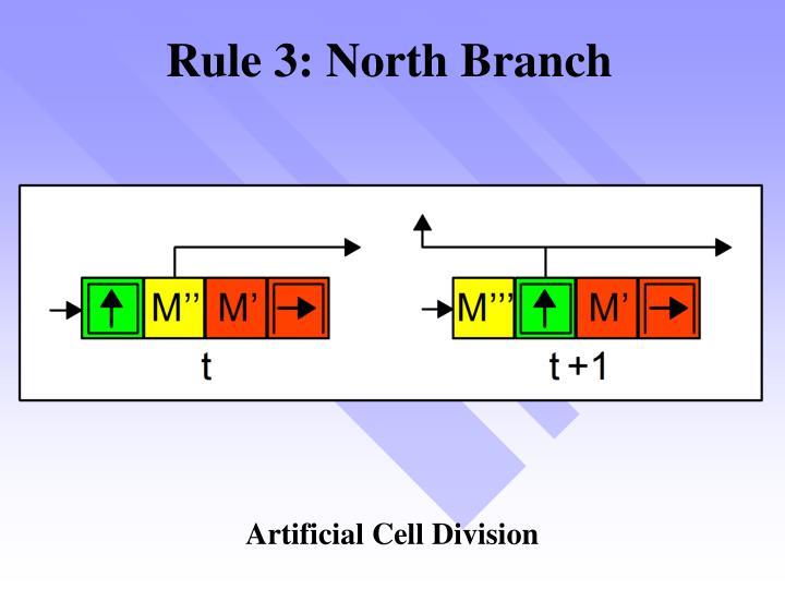 Rule 3: North Branch