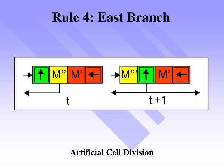 Rule 4: East Branch