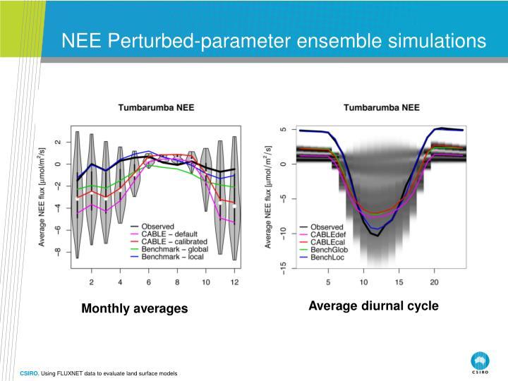 NEE Perturbed-parameter ensemble simulations