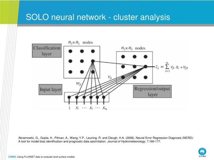 SOLO neural network - cluster analysis
