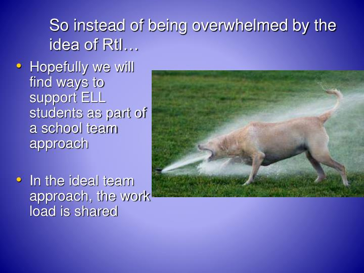So instead of being overwhelmed by the idea of RtI…