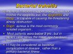 bacterial traheitis