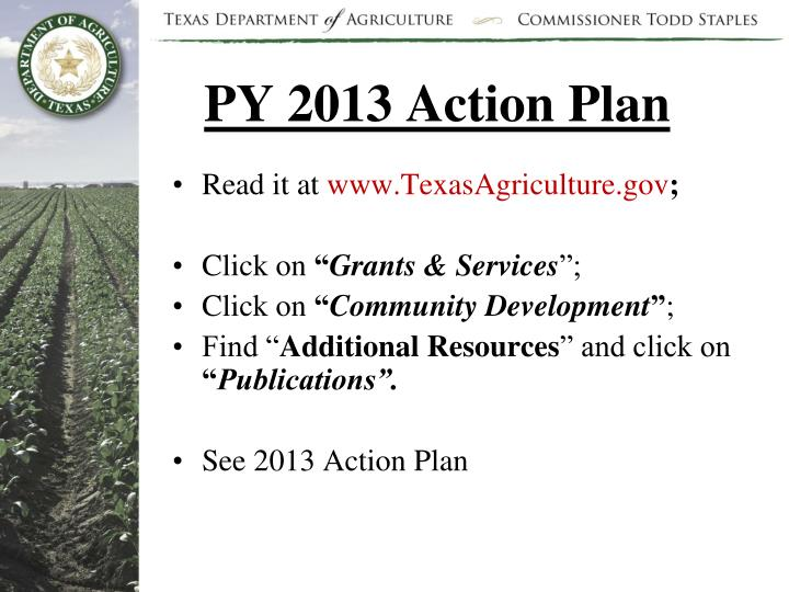 PY 2013 Action Plan