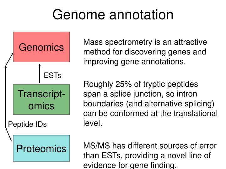 Genome annotation