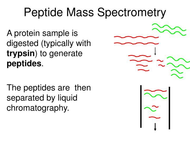 Peptide Mass Spectrometry