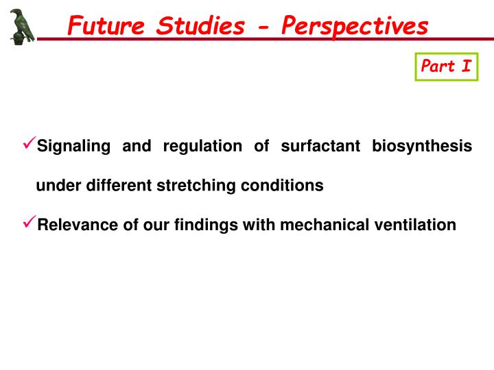 Future Studies - Perspectives