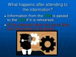 what happens after attending to the information