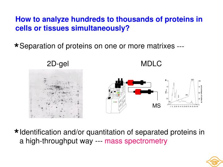 How to analyze hundreds to thousands of proteins in cells or tissues simultaneously?