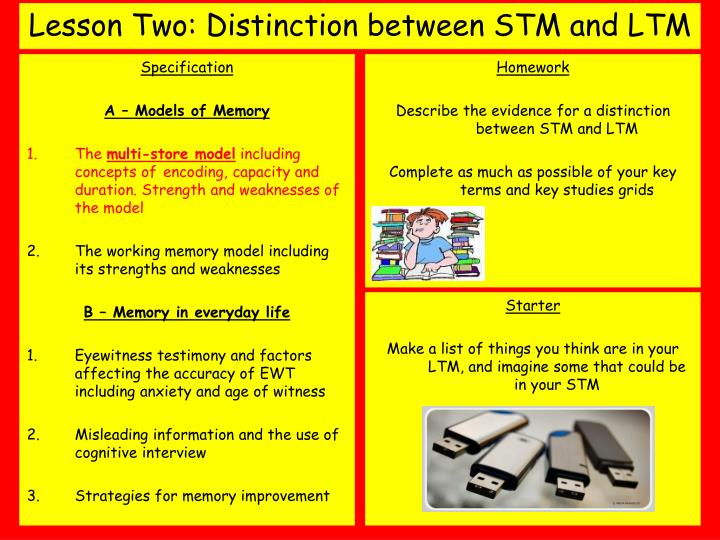 Lesson two distinction between stm and ltm
