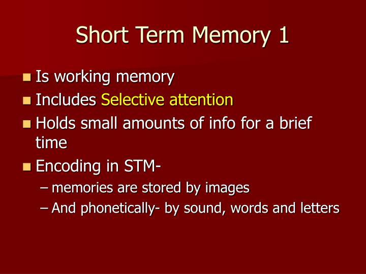 Short Term Memory 1