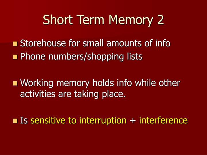 Short Term Memory 2